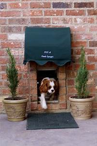 These diy hacks for spoiled dogs are either genius or insane for Dog house with a door