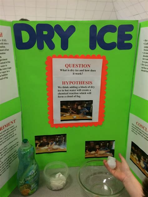 how to project ideas science fair projects ideas www pixshark com images galleries with a bite