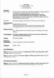 how to prepare curriculum vitae letters free sample With prepared resume samples