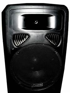 Bafle Mitzu Pasivo 15 Color Negro Usado Excelente Sonido