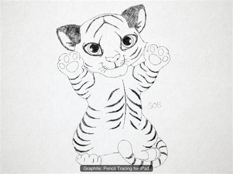 images  easy tiger drawings animals easy tiger