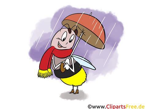 lustige bilder herbst biene mit regenschirm