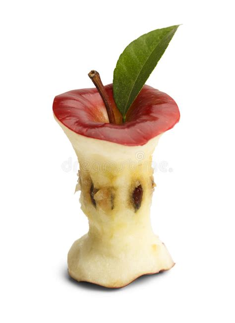 Apple Core stock image. Image of green, beauty, missing ...