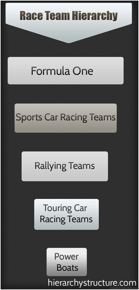 race team hierarchy hierarchical structures  charts