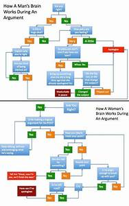 Flow Chart Pictures And Jokes    Funny Pictures  U0026 Best