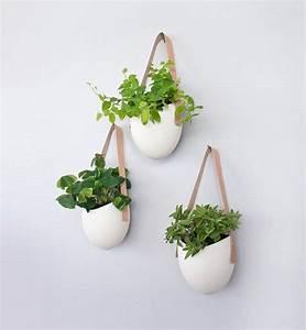 Pot De Fleur Interieur Design : deco pot de fleur suspendu ~ Premium-room.com Idées de Décoration