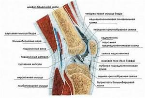 Остеохондроз и какие препараты лечения