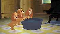 Lady and the Tramp II: Scamp's Adventure Screencaps ...