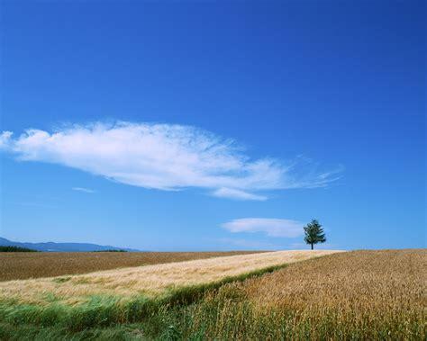 風景桌布下載 - 藍天白雲XP桌布