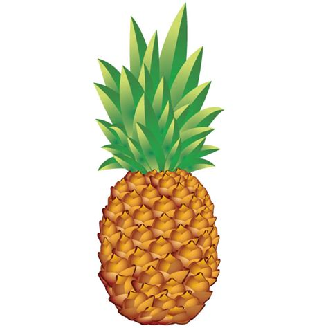 pineapple vector art ai svg eps vector