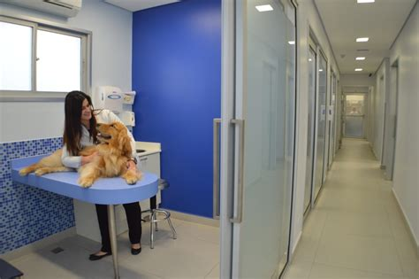 Dognostic centro diagnstico Laboratrio Veterinrio, exames