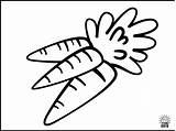 Coloring Pages Fruits Vegetables Carrots sketch template