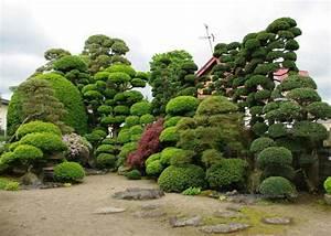 fontaine jardin japonais fabulous astucieux fontaine With awesome fontaine de jardin moderne 2 cascade fontaine de jardin et piace deau projets modernes