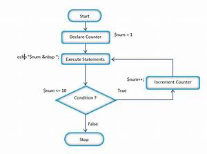 Flow Chart Of The Php While Loop