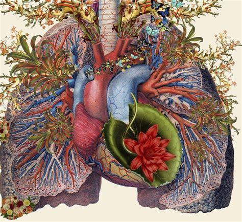 Картинки по запросу человеческое сердце с цветами