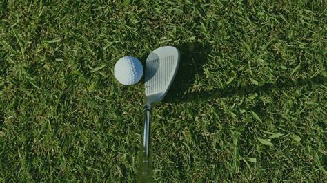 golf club nets backyard ball game grass course lawn golfing outdoor plant fairway tee swing irons golfer equipment wedge forgiving