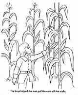 Coloring Thanksgiving Pages Pilgrims Harvest Corn Pilgrim Story Bible History Stalk Printables Printable Popular Colonial Printing Help Dot Getdrawings Drawing sketch template