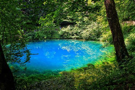 fotos deutschland blaubeuren natur  baumstamm