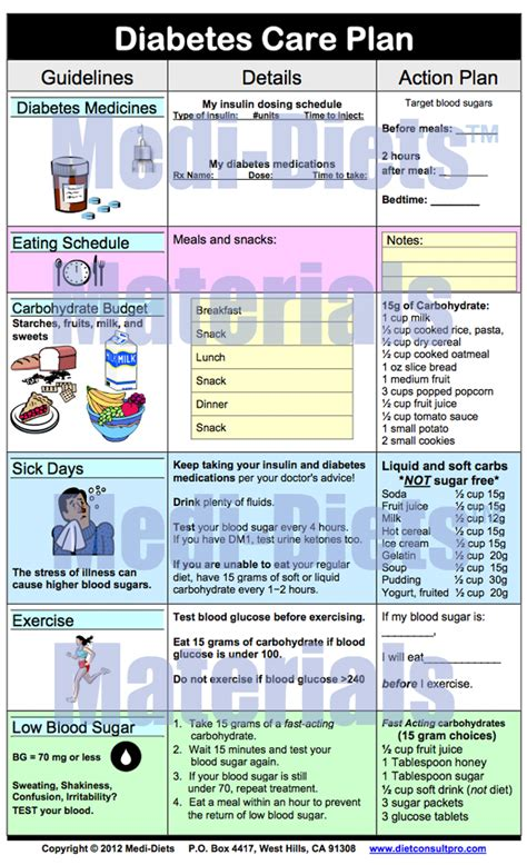 diabetes care plan template diet plan