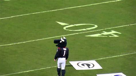 houston texans mascot toro youtube
