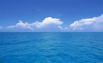 Ocean Asia