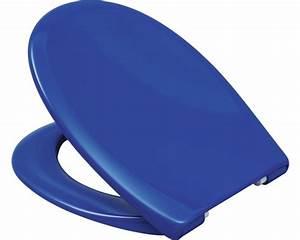 Wc Sitz Blau Absenkautomatik : wc sitz paris blau leicht abnehmbar mit absenkautomatik kaufen bei ~ Bigdaddyawards.com Haus und Dekorationen