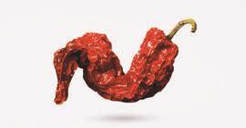 d駸serte cuisine il peperone crusco lucano diventa chips il sole 24 ore