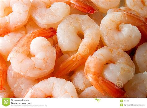 cuisiner des crevettes cuites crevettes cuites images libres de droits image 297499
