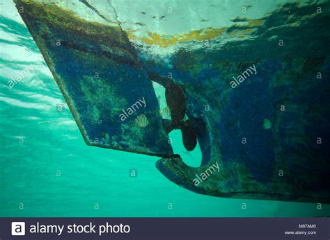 Boat Propeller Underwater by Underwater Picture Of The Propeller On A Maldivian Boat