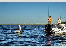 Tarpon Fishing in Boca Grande, FL Tarpon World Capital