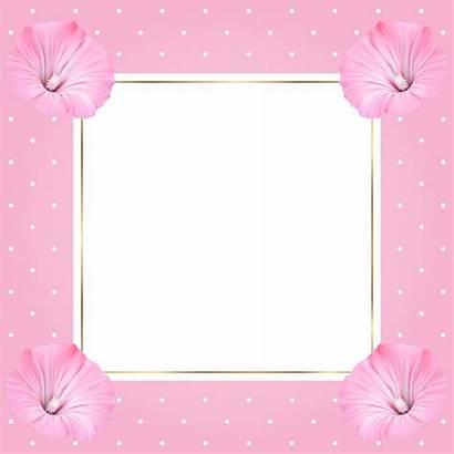 Frame Transparent Flowers Frames Clipart Yopriceville Previous