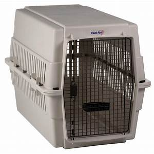 Kennel aire extra large travel aire pet carrier at hayneedle for Xl dog travel crate