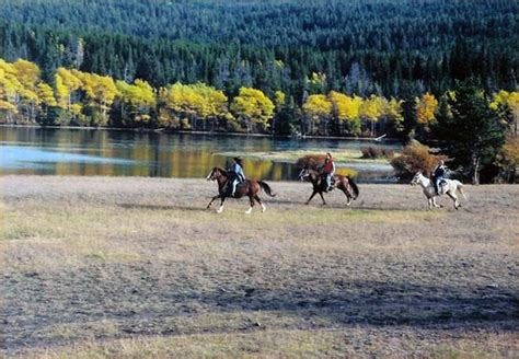 riding horseback equitrekking vacations columbia british journey riders venture experience canada bc spaces mountain open both park vacation horse stress
