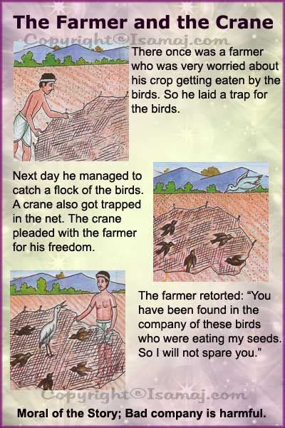 moral stories the farmer and the crane moral 339 | b4c73da1bcd103c637492d643488b651