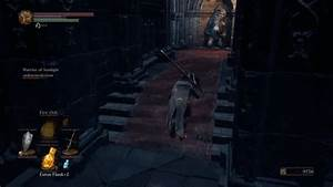 Dark Souls GIF - Find & Share on GIPHY