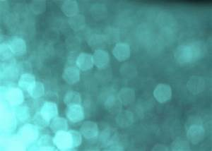 Abstract Bokeh Light Background Free Stock Photo - Public ...