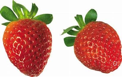 Strawberry Freepngimg