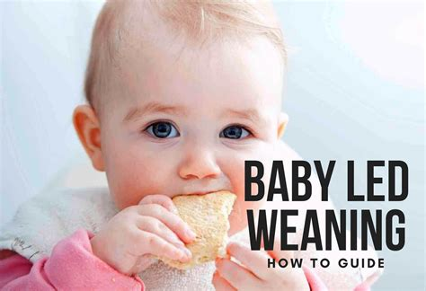 Baby Led Weaning How To Guide Babycare Mag