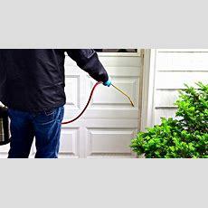 Pest Control  Buggies Pest Control