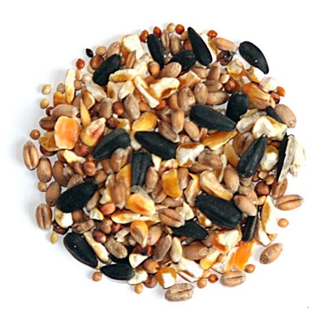 all seasons wild bird food bird seed mixes bird food