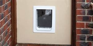 How to choose the best pet door bunnings warehouse for Best weatherproof dog door