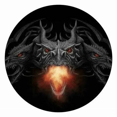 Dragon Emblem Fire Covers Spyder Am Brp