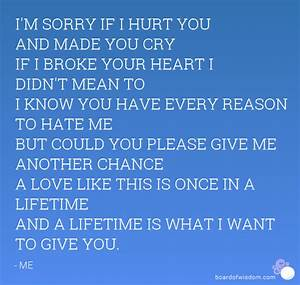 I Didnt Mean To... Hurt Meaning Quotes