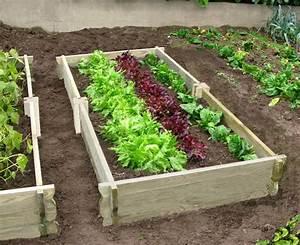 faire son jardin potager With comment refaire son jardin