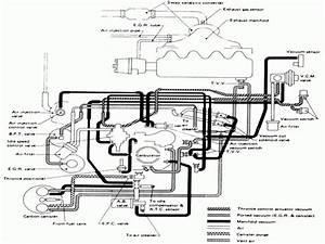 1994 Nissan D21 Wiring Diagram