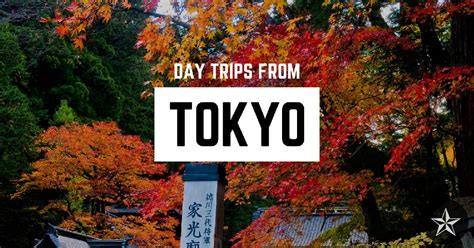 10 Amazing Day Trips from Tokyo You Need to Check Out in 2020