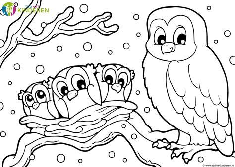 Dieren Kleurplaten Uilen 20 beste kleurplaat dieren uil win charles