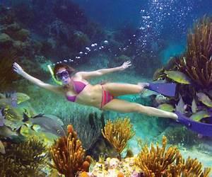 Snorkeling At Puerto Morelos Riviera Maya
