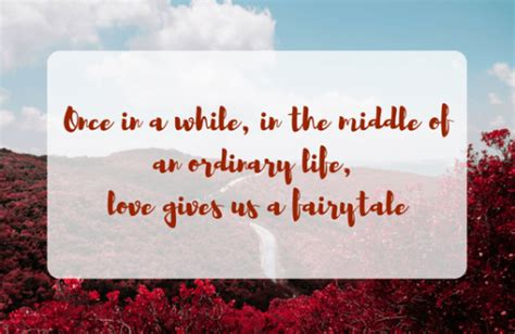 indian wedding quotes magical quotes  express