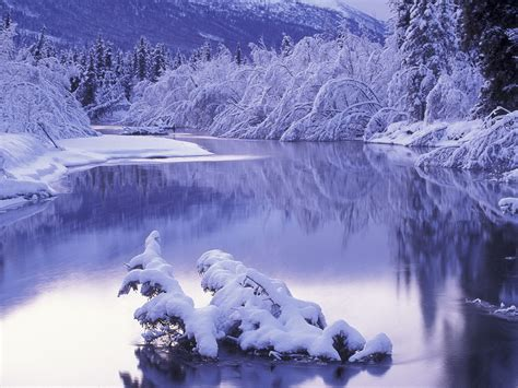Cool Winter Background by Free Wallpapers Winter Wallpaper